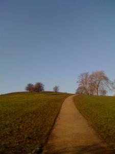 Primrose Hill - (c) Sonya Oldwin