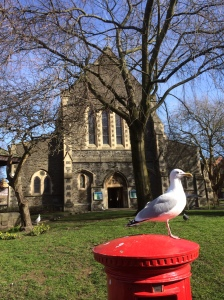 seagull on pillar box
