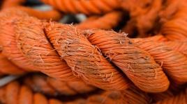 three line tales week 17: orange rope