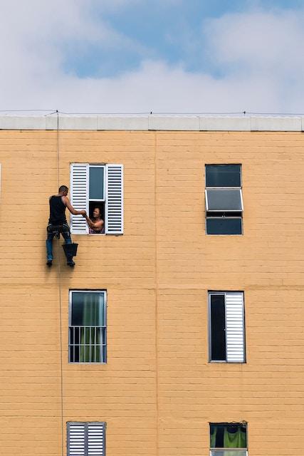 three line tales, week 115: a window visitor