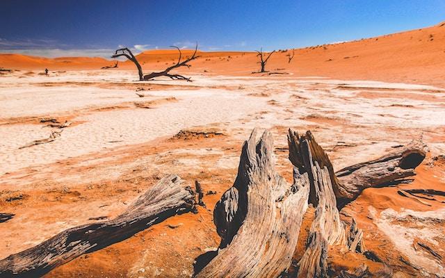 three line tales week 127: a desert