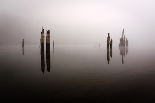 three line tales, week 143: poles in a misty lake