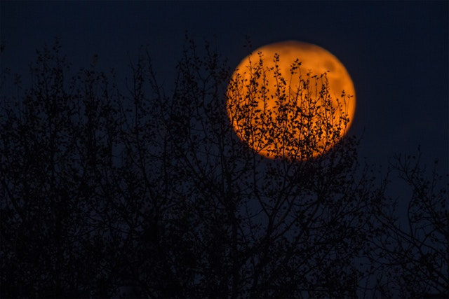 three line tales, week 196: blood moon rising over a dark meadow for Halloween