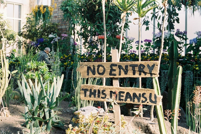three line tales, week 200: a no entry sign for a garden