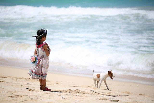 three line tales 236: a girl and a dog at the beach