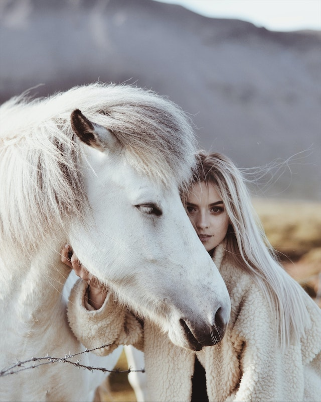 three line tales, week 247: a white pony with a white girl